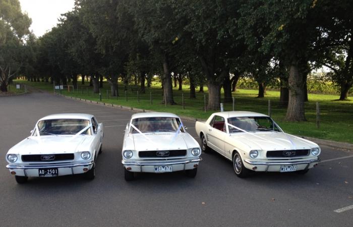 1966 White Hardtop Mustang