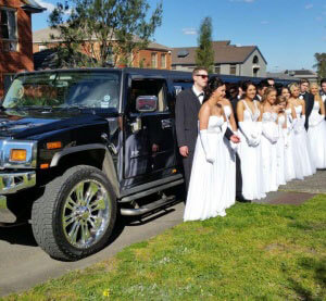 black beauty limo hire